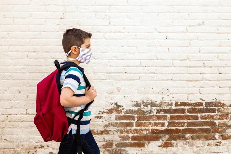Как будут работать школы и детские сады на длинных выходных