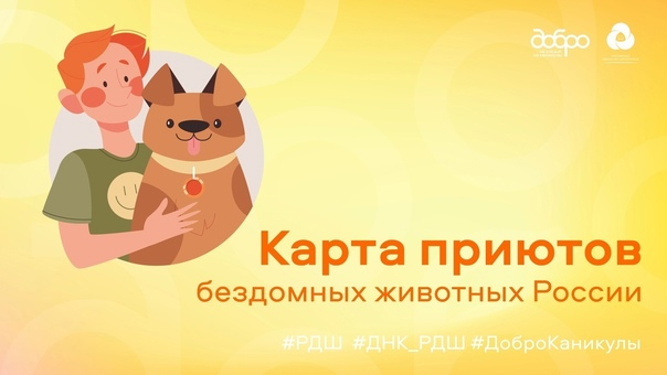 «Карта приютов России» — платформа, которая изменит жизни!