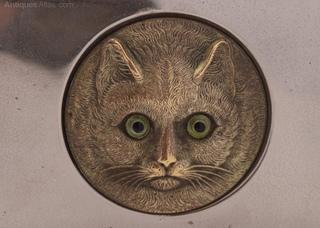 Вездесущая котья морда