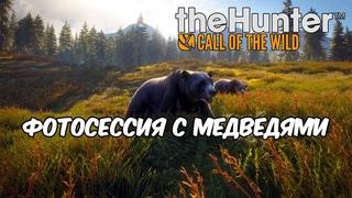 🔴 Stream'чанскАй ▼ Фотосессия с медведями ● theHunter: Call of the Wild # 3