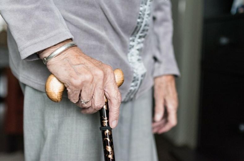Объявлен II конкурс программ и практик в сфере социокультурной реабилитации инвалидов, изображение №1