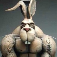 Bodybuilding & Fitness - iHerb.com