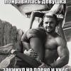 Кирилл Асмыкович