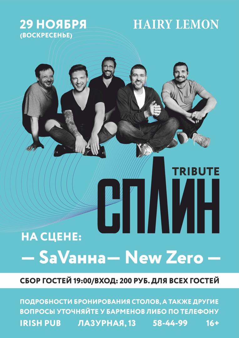 Афиша 29 ноября / СПЛИН (tribute) / HAIRY LEMON PUB