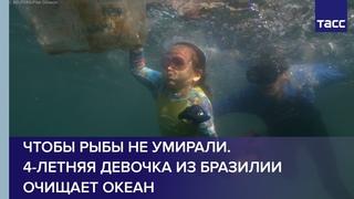 Чтобы рыбы не умирали. 4-летняя девочка из Бразилии очищает океан