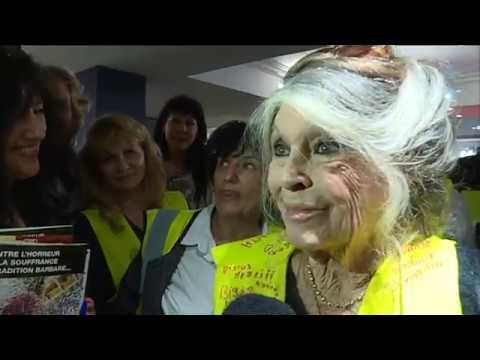 Brigitte Bardot invitée surprise d'une réunion de gilets jaunes dans le Var