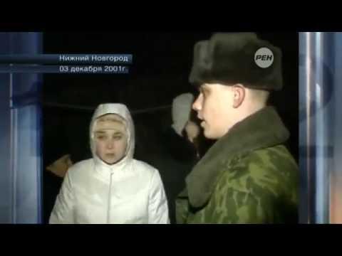 Бестолковый солдат снимает кота с дерева русские отучают котов по деревьям лазать