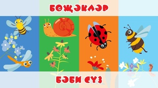 БӘБИ СҮЗ: бөҗәкләр / Насекомые / Изучаем виды насекомых с малышами